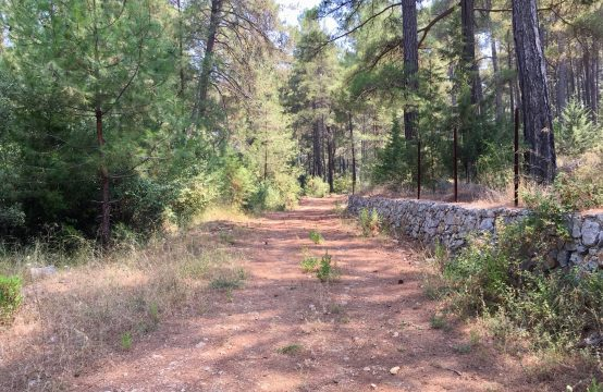 Land For Sale, Gocek