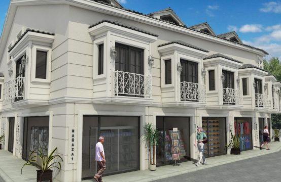 Apartments and Shops for Investors